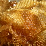 aliment-miel-2