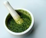 Sauce : Pesto