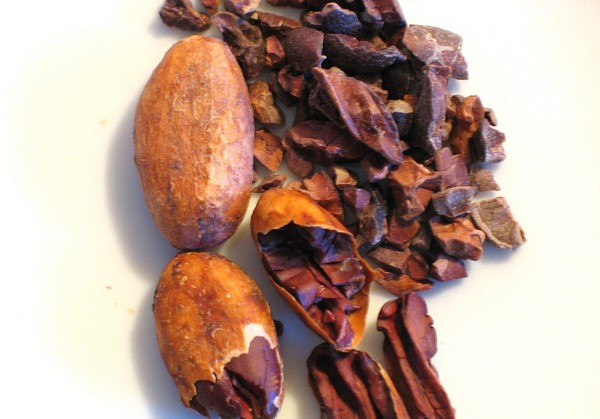 cacao cru